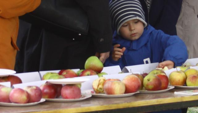 Õunaaiapäev