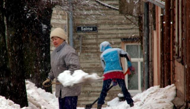 Lumekoristajad