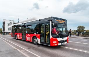 urban busses