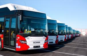 автобусов городских линий