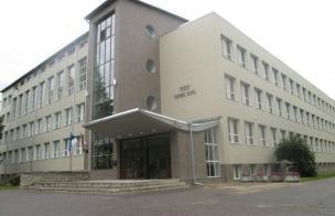 Tamme kool