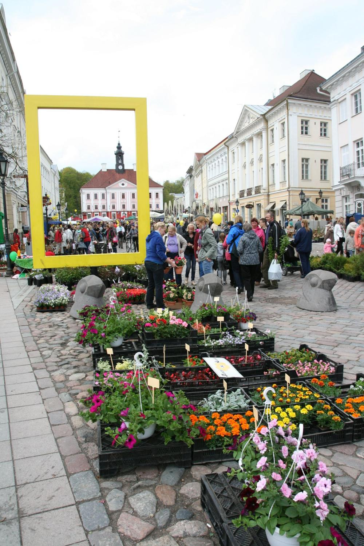 253583265b5 Tartu laadad | Tartu linn